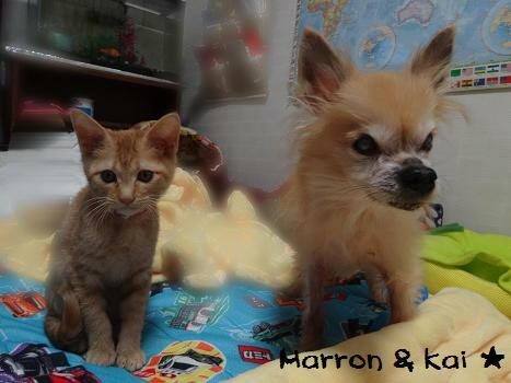 マロン&海2ショット
