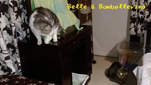 ベル&ボン