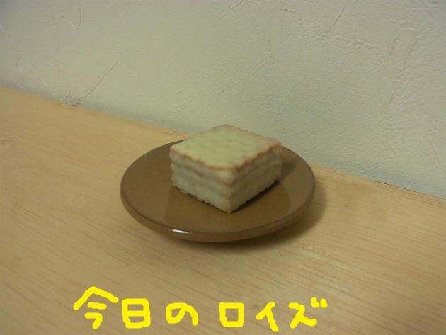 R1501269.jpg