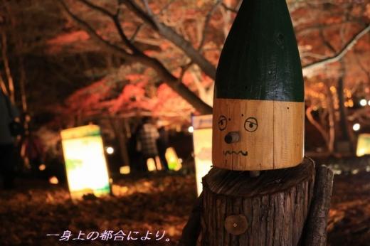 IMG_0528紅葉見ナイト7