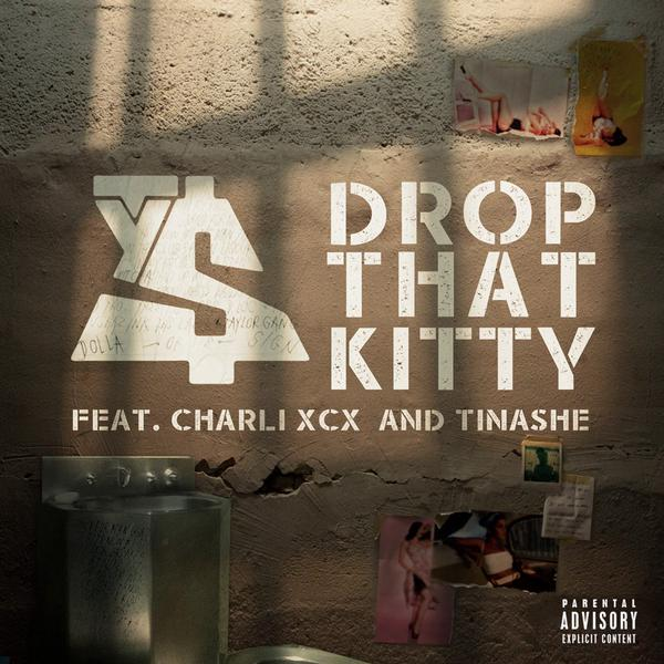 drop-that-kitty1.jpg