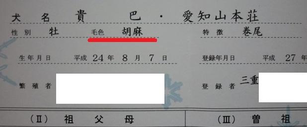 201512カム毛と血統書-05