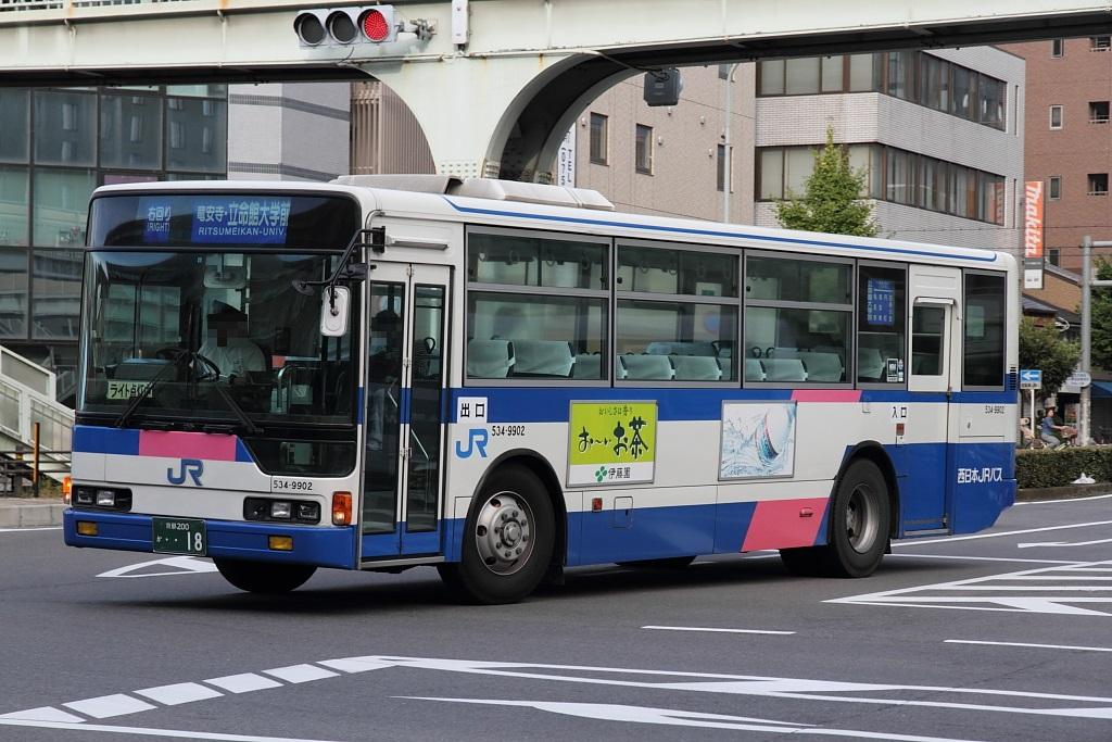 534_9902.jpg