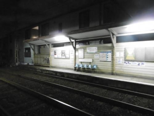 P1120064.jpg