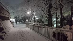 160118雪