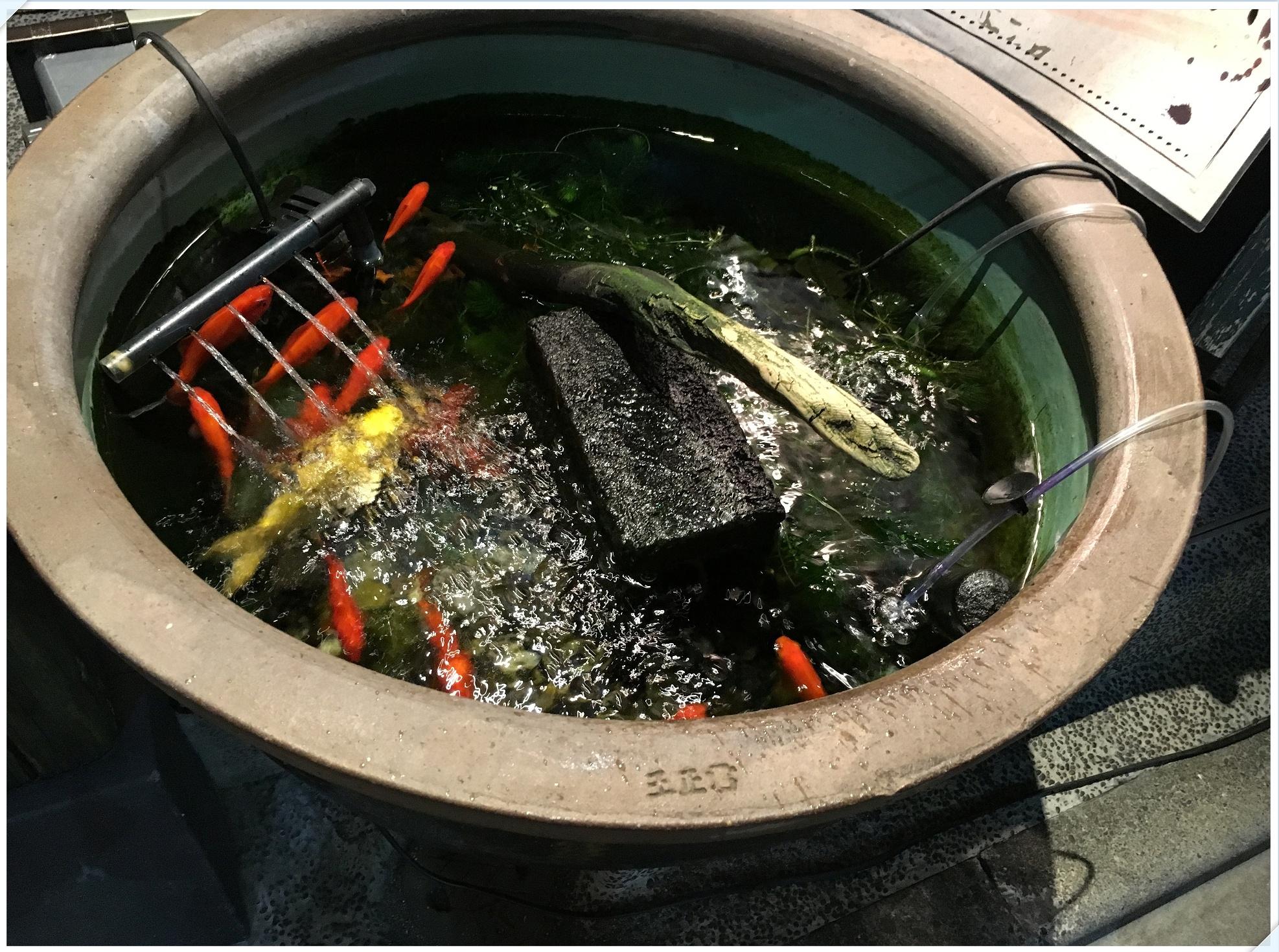 okonomi_4_120.jpg