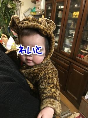玲仁 5カ月