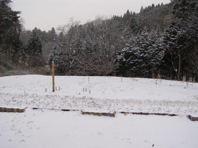 窓からの雪景色0116
