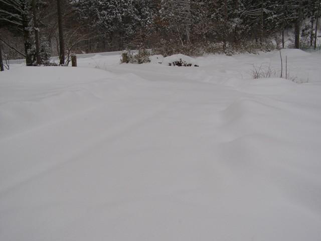 雪かき前0130