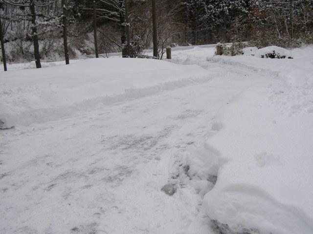 雪かき後0130