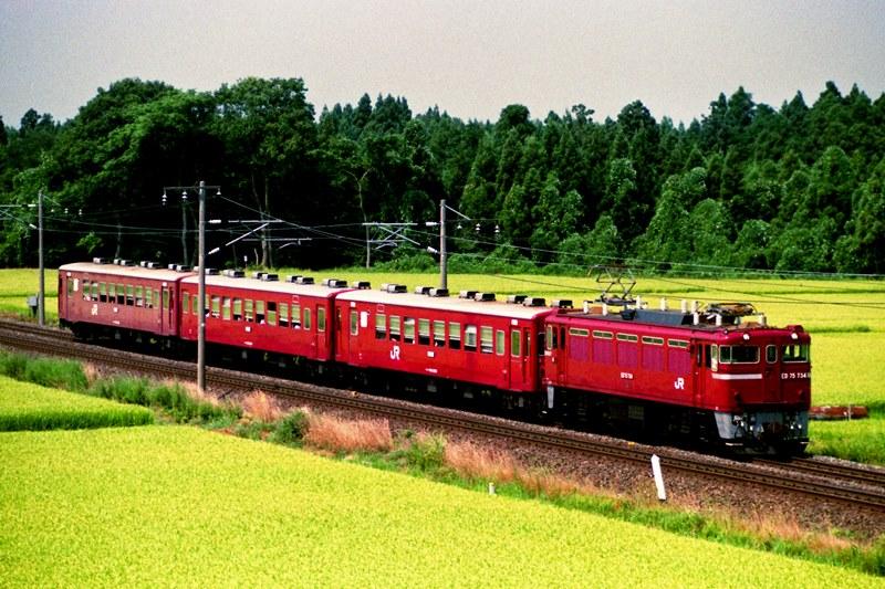 1994年8月18日 六原~金ヶ崎にて (2)