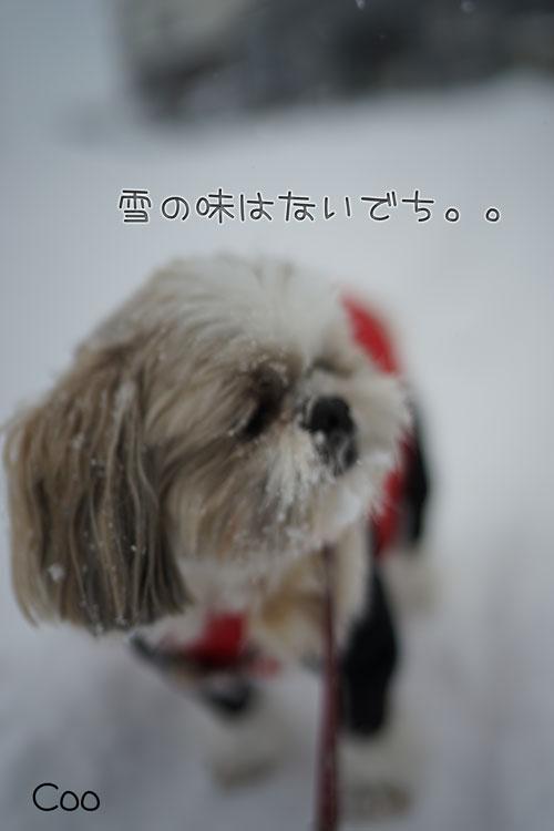 01-14_6269.jpg