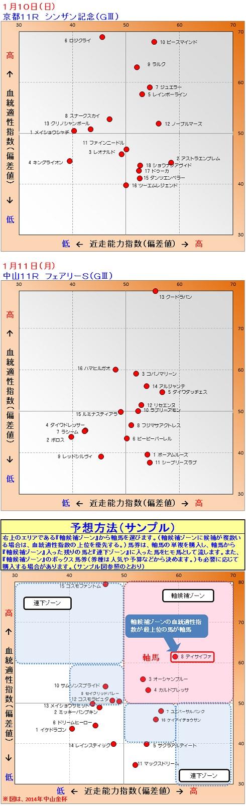 2015-01-1011競馬予想