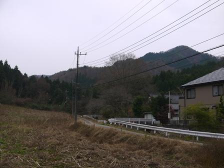 P1530607.jpg