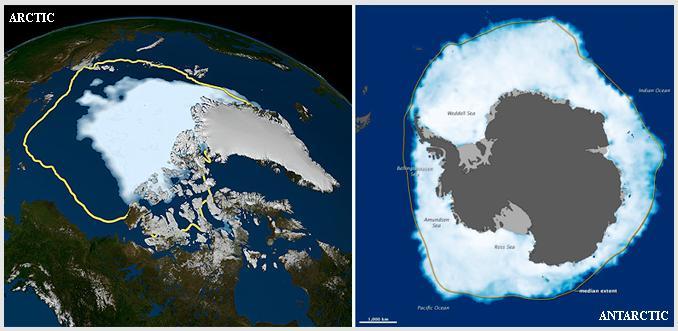 北極と南極