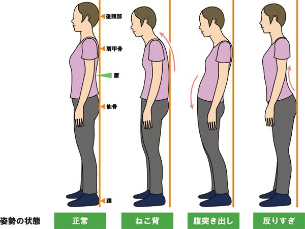 「正しい姿勢」の画像検索結果