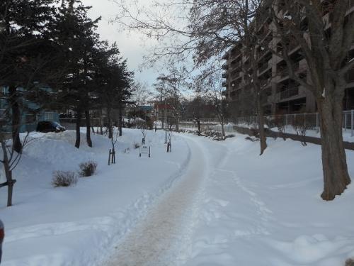 澄川用水路遊歩道
