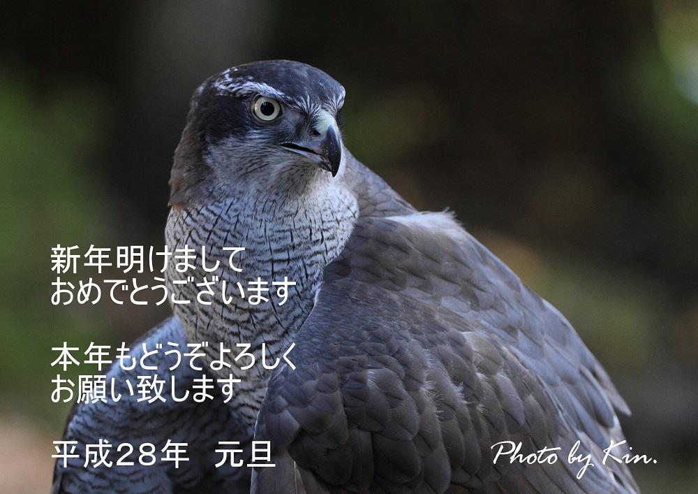 IMG_1512300003-2.jpg
