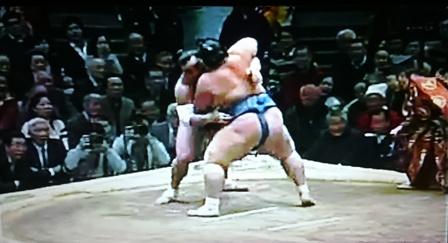 琴奨菊対日馬富士2