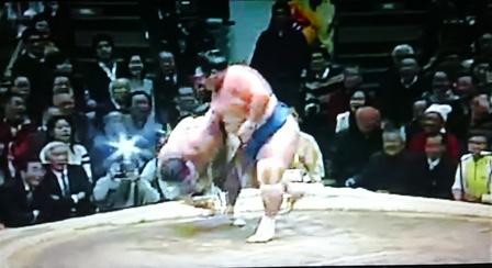 琴奨菊対日馬富士4
