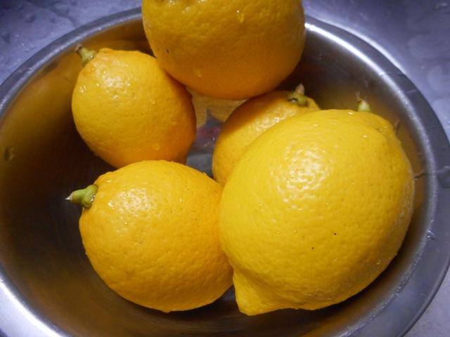 無農薬レモン1