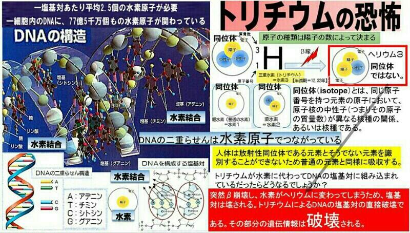日本の原発はミサイル攻撃されても安全? という安倍答弁!山本太郎の質問に…安全基準に適合しているので