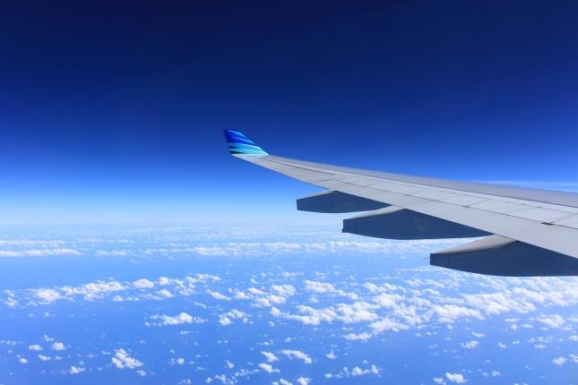 wing-221526_1280.jpg