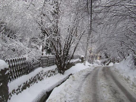 winter-606536_1280.jpg