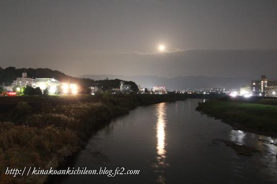 151226 Kyoto gosho 15