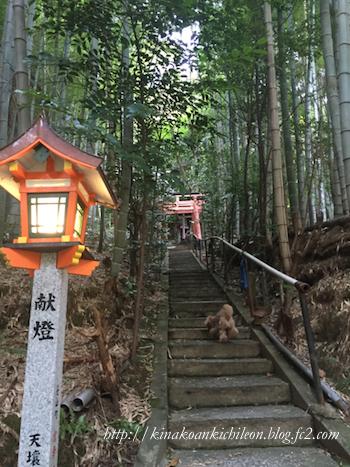 151227 Fushimi inari 9