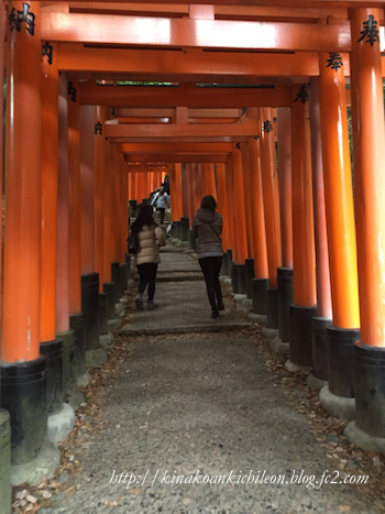151227 Fushimi inari 15