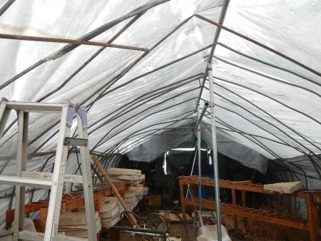 ビニールハウス修理 (6)