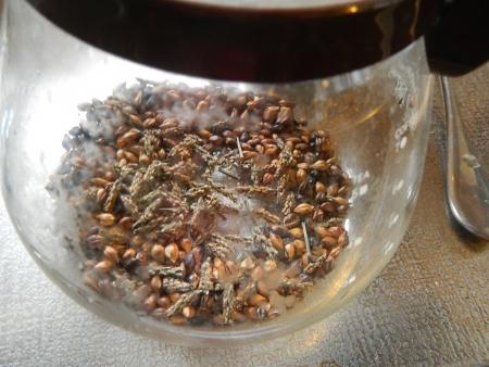 オオバコ麦茶 (2)