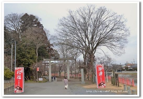 大前恵比寿神社と白鳥たち