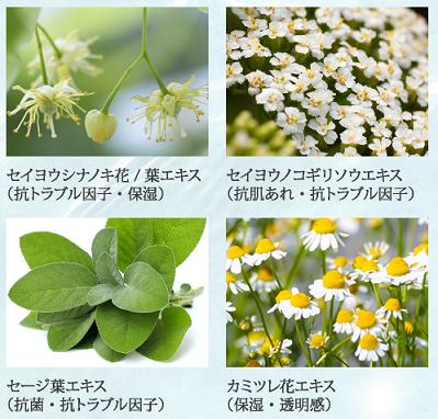 ハリーヴィーナス 植物エキス