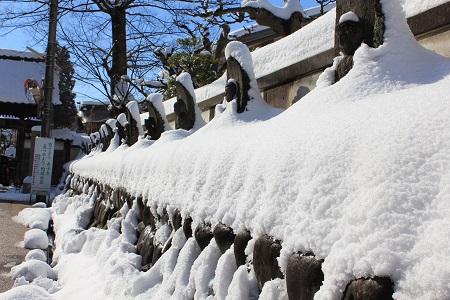 雪をかぶった