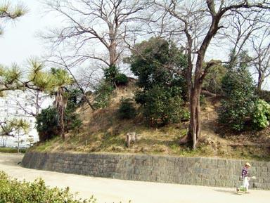 堀跡と土塁1
