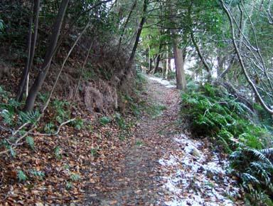千畳敷から本丸跡への道