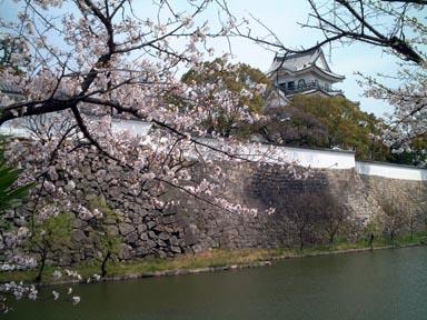 桜に天守閣