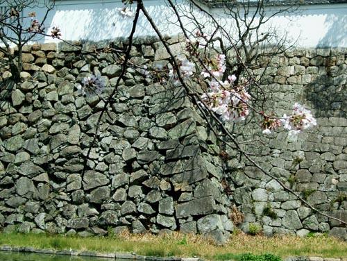 本丸石垣8