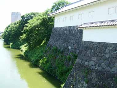 二の丸東大手門南多聞櫓と堀