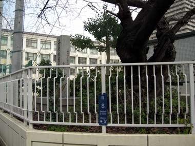 土屋藩大阪蔵屋敷跡地の大阪市立中央小学校