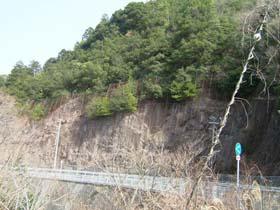 道陸神社から蛇谷城址を仰ぐ