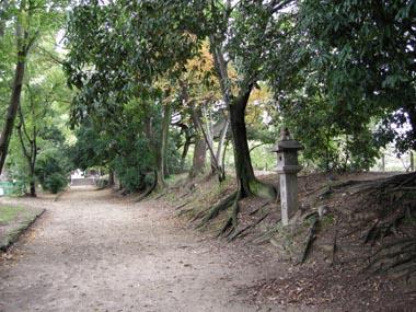 沢良宜城馬場跡の参道