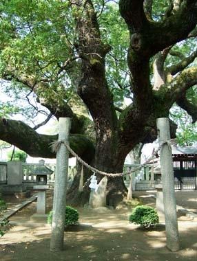 楠正行墓の正面