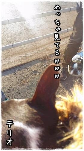 P_20160122_152543.jpg