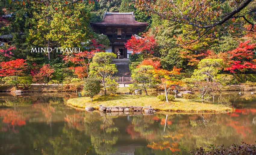円成寺 庭園 紅葉