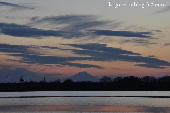渡良瀬遊水地の夕日(6)5