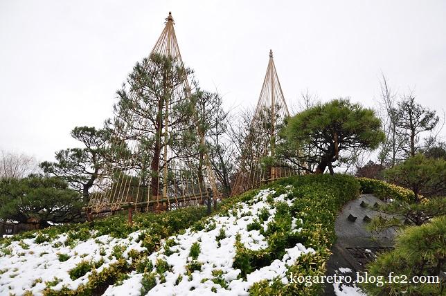 雪の古河総合公園5