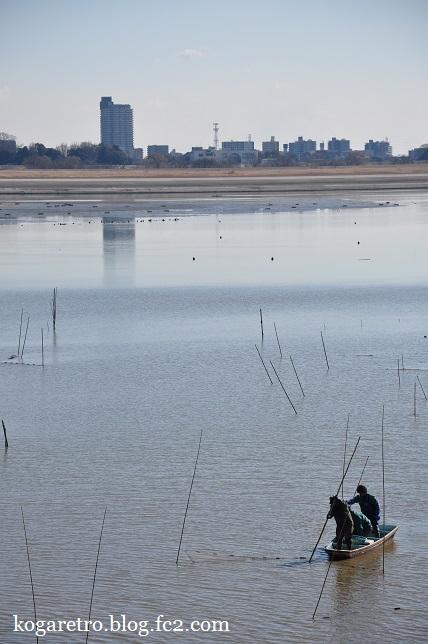 谷中湖の干し上げ(3)